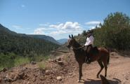 Mountain trail ride